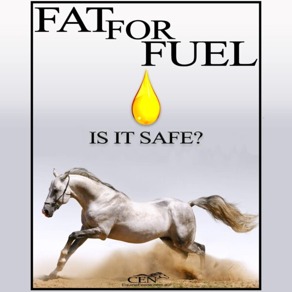 Fat For Fuel, Is It Safe For Your Horse