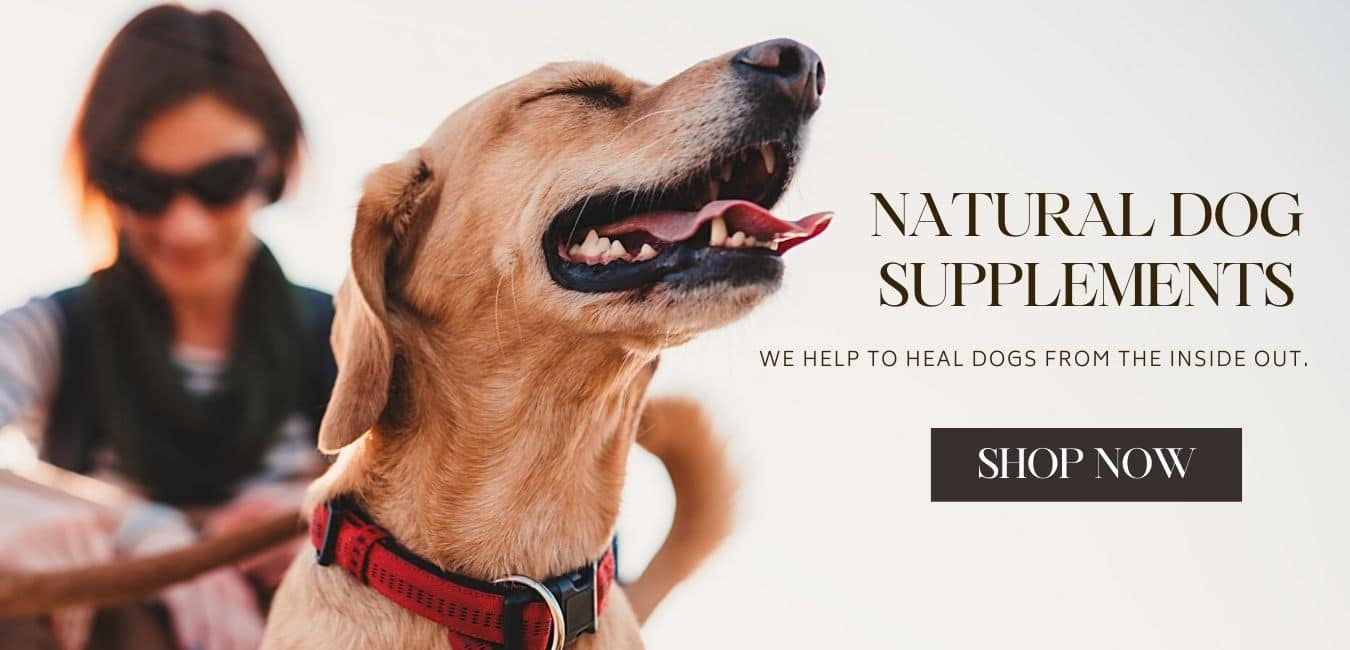 CEN DOG NUTRITION NATURAL SUPPLEMENTS FOR DOGS