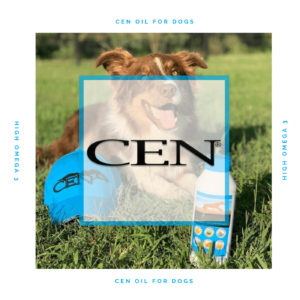 Episode 1 CEN Oil Health Benefits For Dogs - High Omega 3