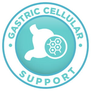 Gastric Cellular Support Icon