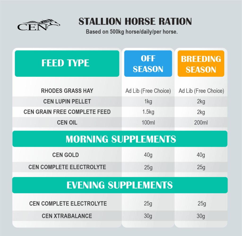 STALLION HORSES TABLE