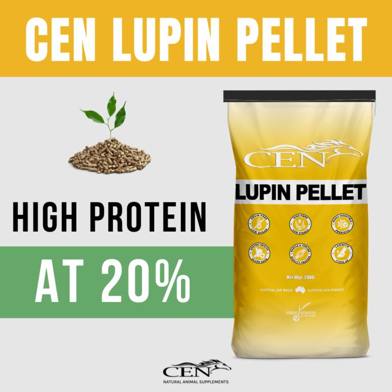 CEN Lupin Pellet Protein